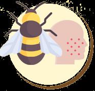 Os sintomas de alergia à picada destes animais são: