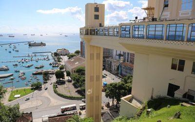 Preço de uma desinsetização na Bahia