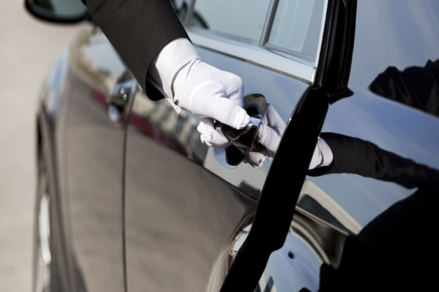 Dedetização automotiva: 5 dicas para prevenção de pragas urbanas no seu veículo