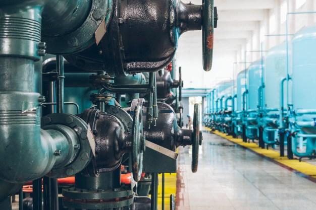 Como começar o controle de pragas industrial | Salvador | Bahia