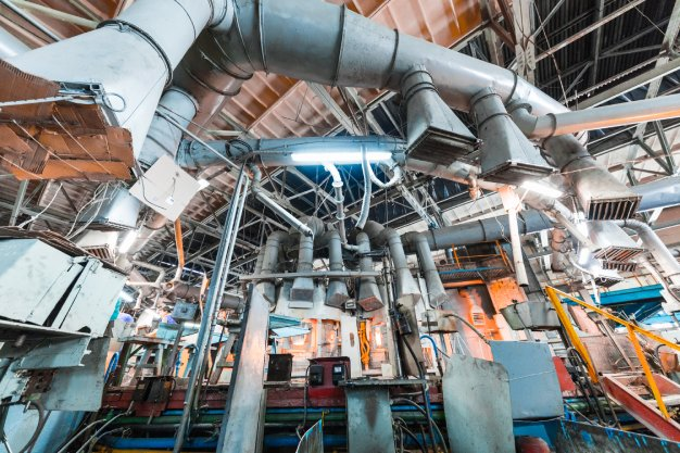Controle de Pragas Industrial: conheça as principais ameaças