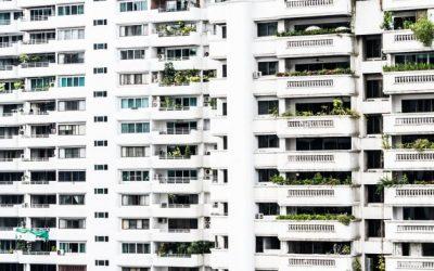 Dedetização de Apartamento: por que o serviço deve ser periódico?