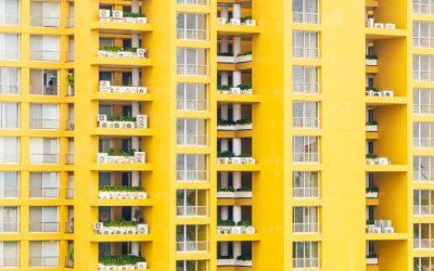 Dedetização de Apartamento: quais são as ações necessárias antes e depois do serviço