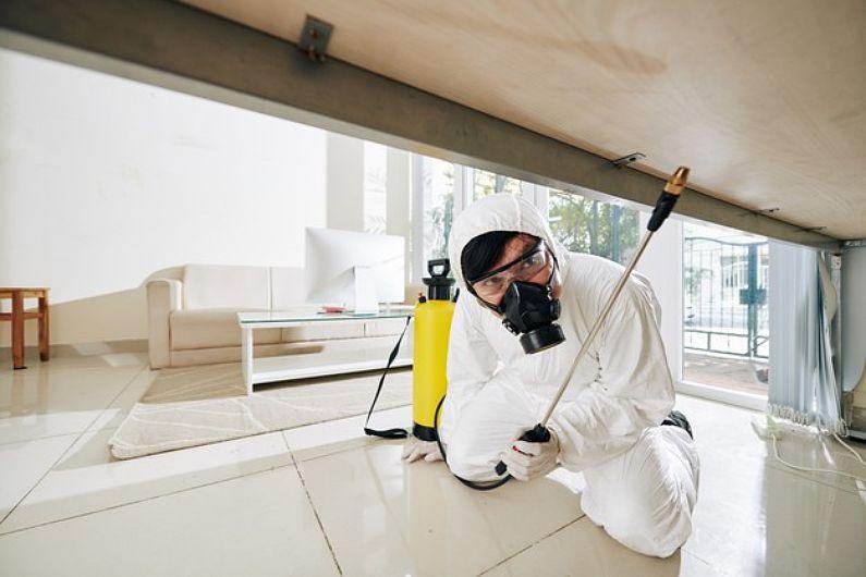 Hotéis e pousadas em Salvador: mantenha a segurança com serviços de sanitização e controle de pragas